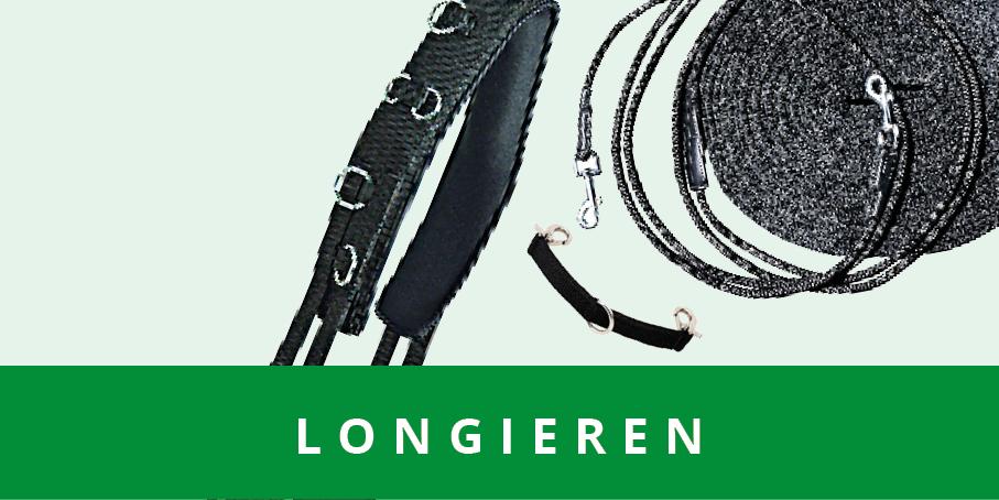original_images/Longieren.7c1000.jpg