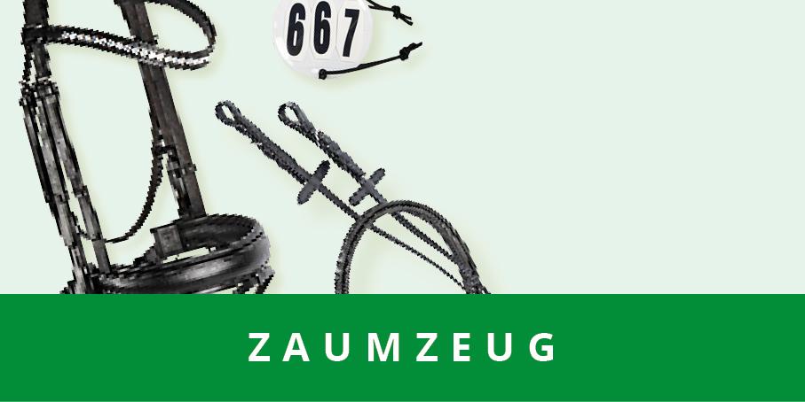 original_images/Zaumzeug.f85881.jpg