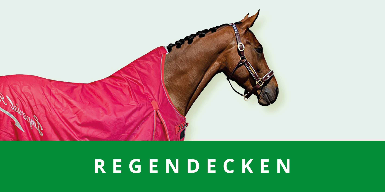 original_images/categoriebanner_regendekens.84452c.jpg