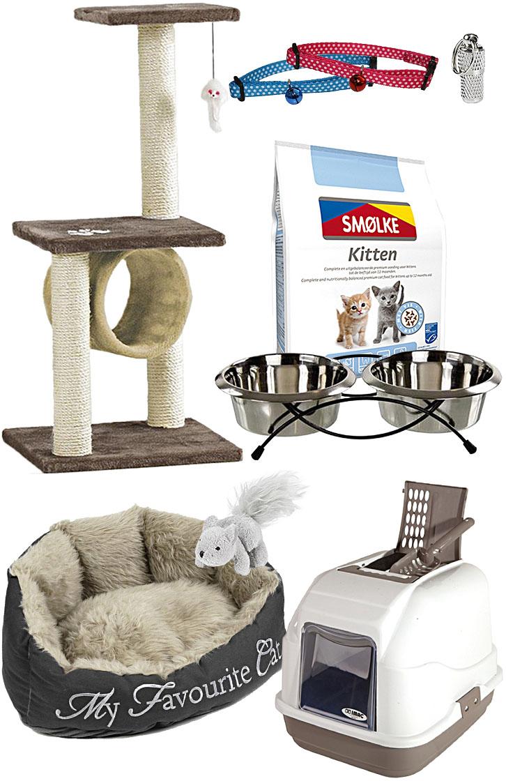 Kätzchen Set